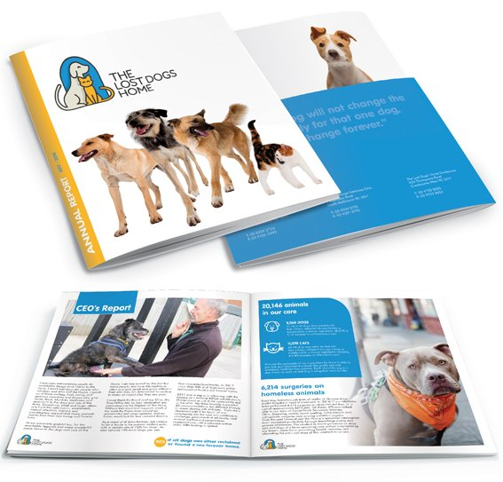 An annual report for a dogs home. Showing, front, back and inside pages of the report.