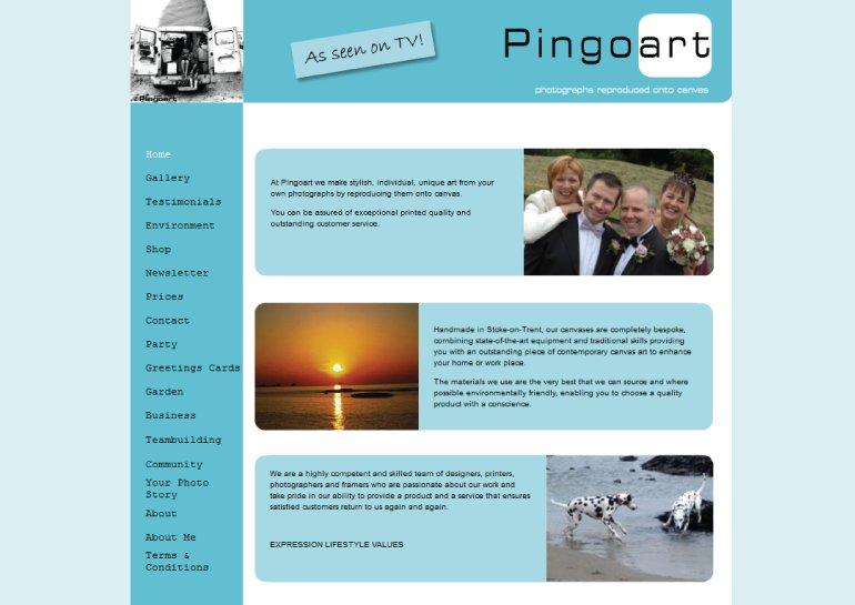 Website design for Pingo Art