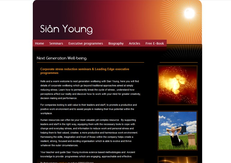 Website design for Sian Young.