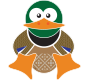 A duck promoting website design services by am:pm graphics